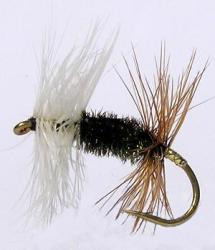 Dry Fly in need of floatant