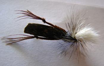 hopper imitation fly