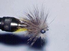 Artificial Fly for Catching ZPermit
