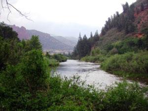 Fryingpan River