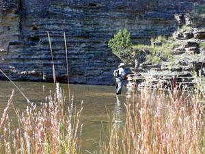 Fishing the Pecos River