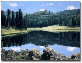 Pinetop area in the White Mountains  of eastern Arizona