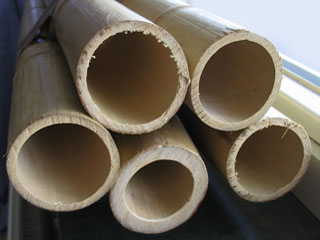 Culms of bamboo
