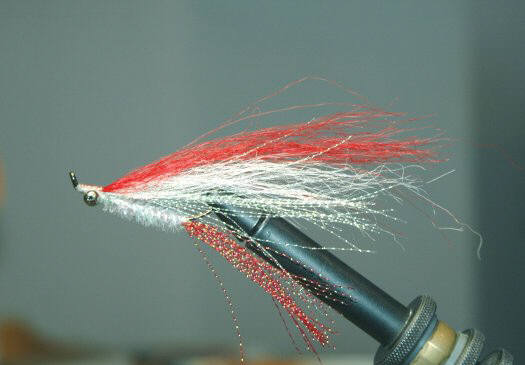 Artificial Fly for Lake Trout