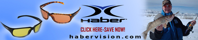 Habervision Sunglasses