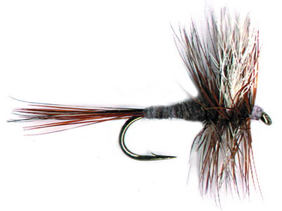 How to Choose Your Flies For Wet-Fly Fishing