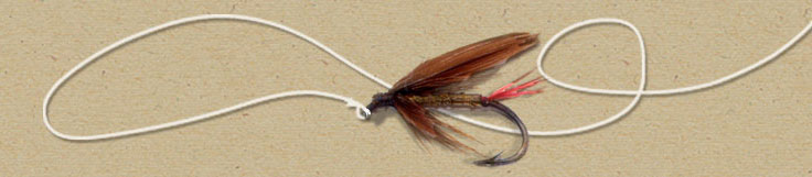 Pink Salmon Artificial Fly