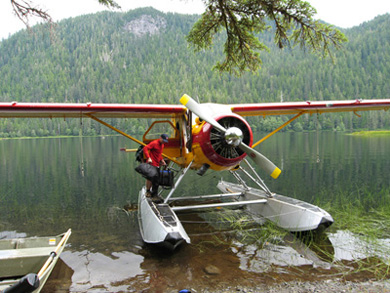 Alaska's unusual form of transportation