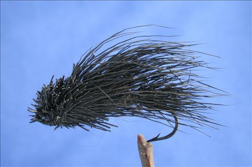 Steehead Fly